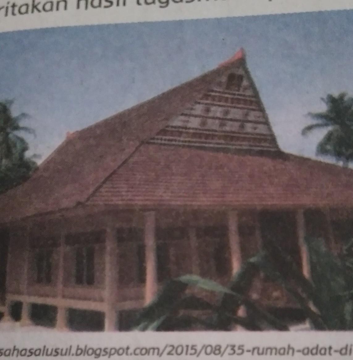 Itu Gambar Rumah Adat Baileo Asal Provinsi Keunikan Tolong Dijawab Kak Plieesss Jan Ngasal Brainly Co Id