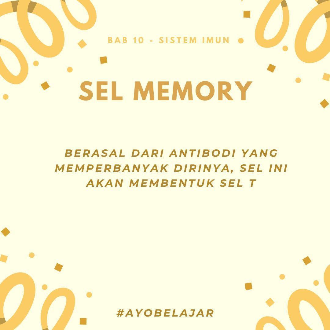 1#apakah yang dimaksud sel memori yang ada di dalam tubuh ...