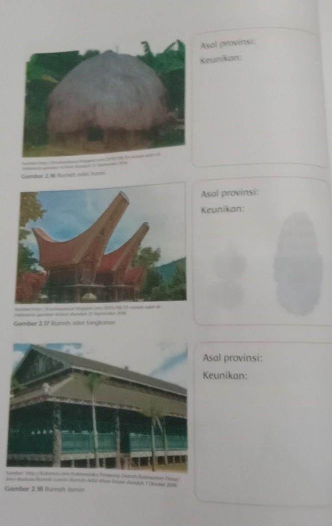 Tulislah Nama Asal Provinsi Dan Keunikan Pada Gambar Rumah Adat Tersebut 2 Brainly Co Id
