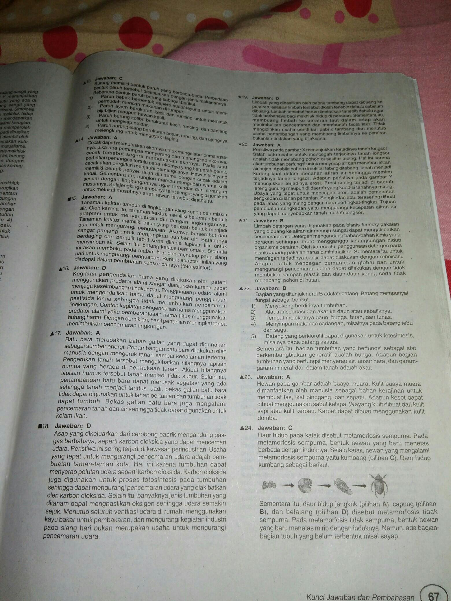 Jawaban Buku Detik Detik Kelas 6 2020 Bahasa Indonesia Ilmusosial Id