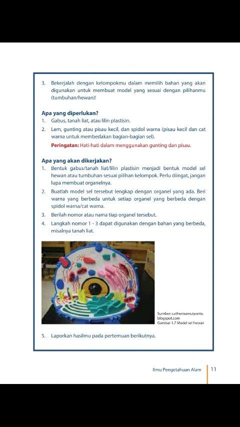 4300 Gambar Model Sel Hewan Dari Plastisin Gratis