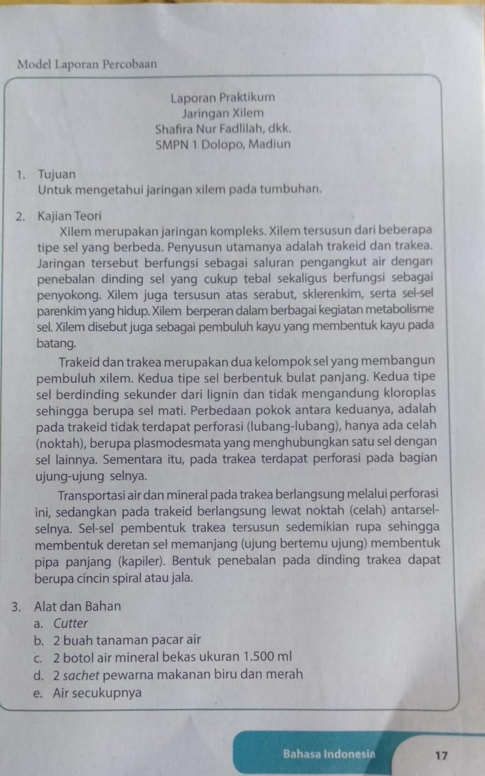 Perhatikan Buku Paket Bahasa Indonesia Halaman 17 Kelas 9 Manakah Yang Termasuk Pernyataan Umum Brainly Co Id