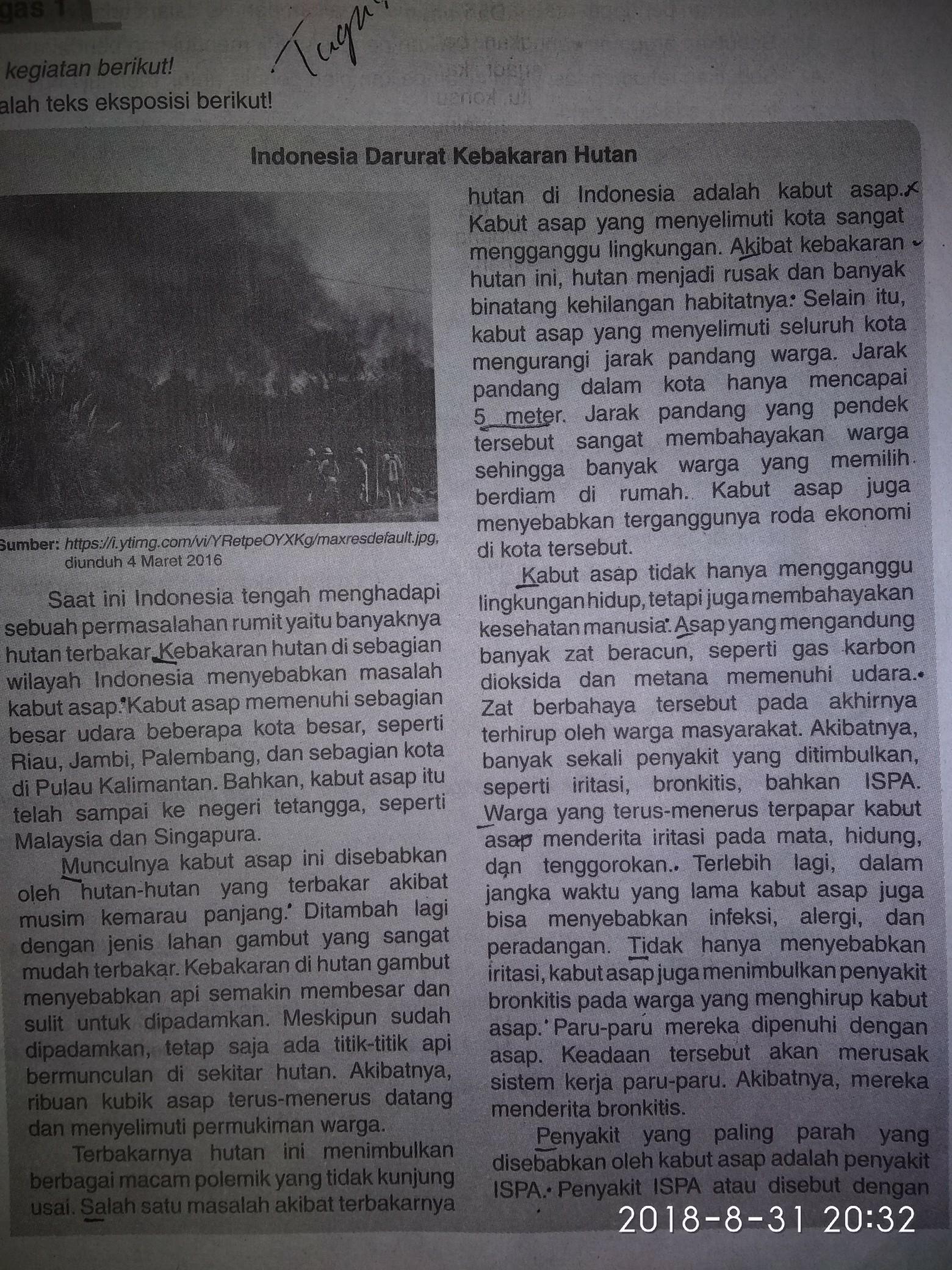Fakta Teks Ekaposisi Indonesia Darurat Kebakaran Hutan Brainly Co Id