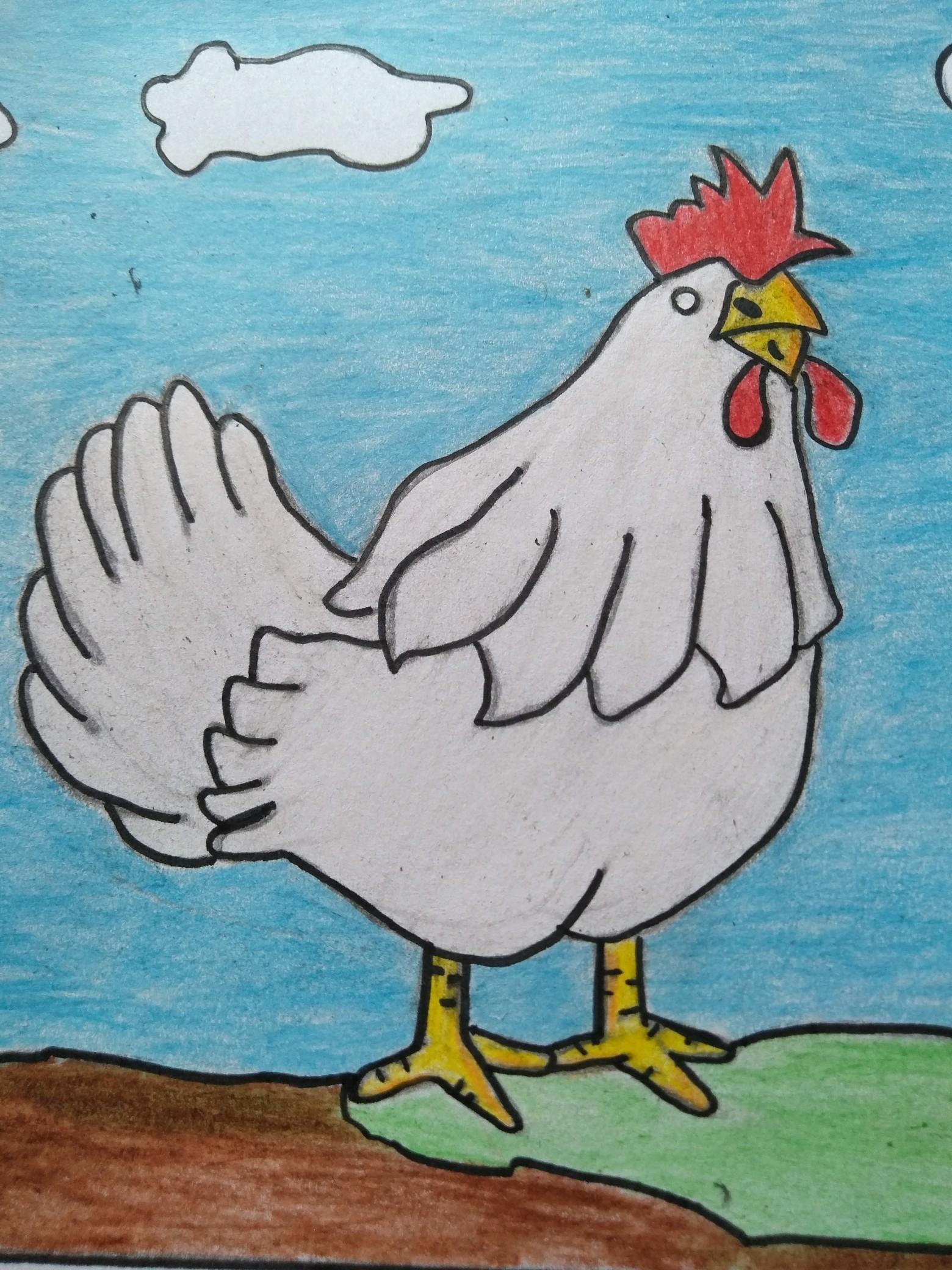 76+ Gambar Arsiran Ayam Kekinian