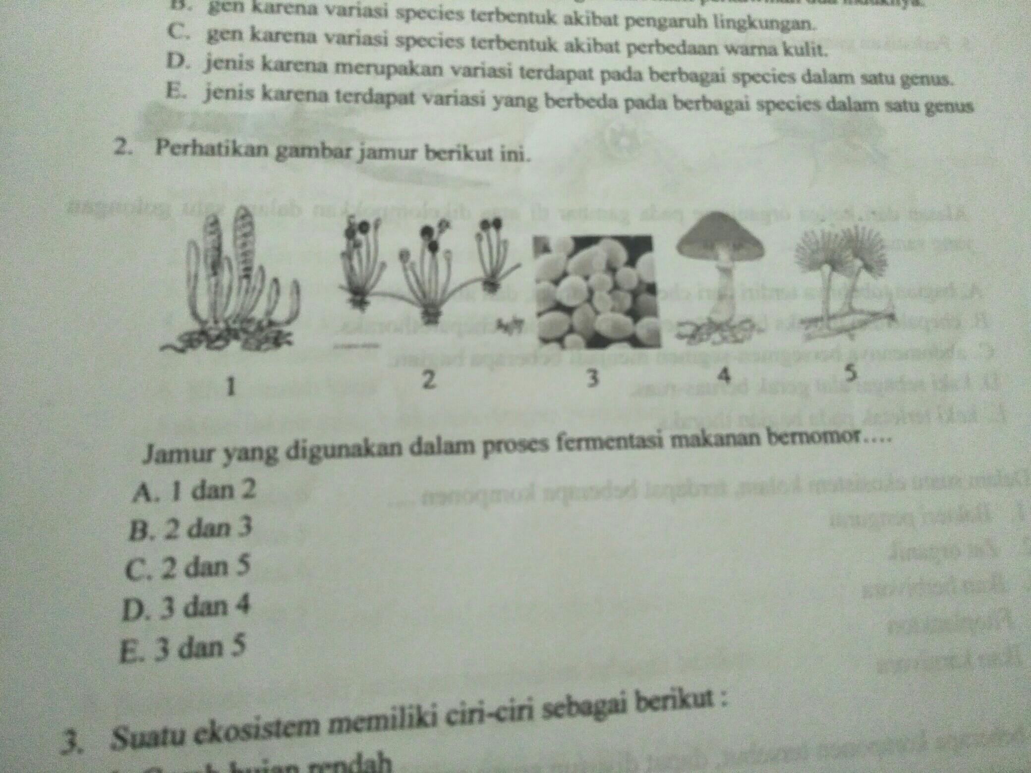 perhatikan gambar jamur berikut ini!jamur yang digunakan ...