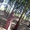 Fesyafa