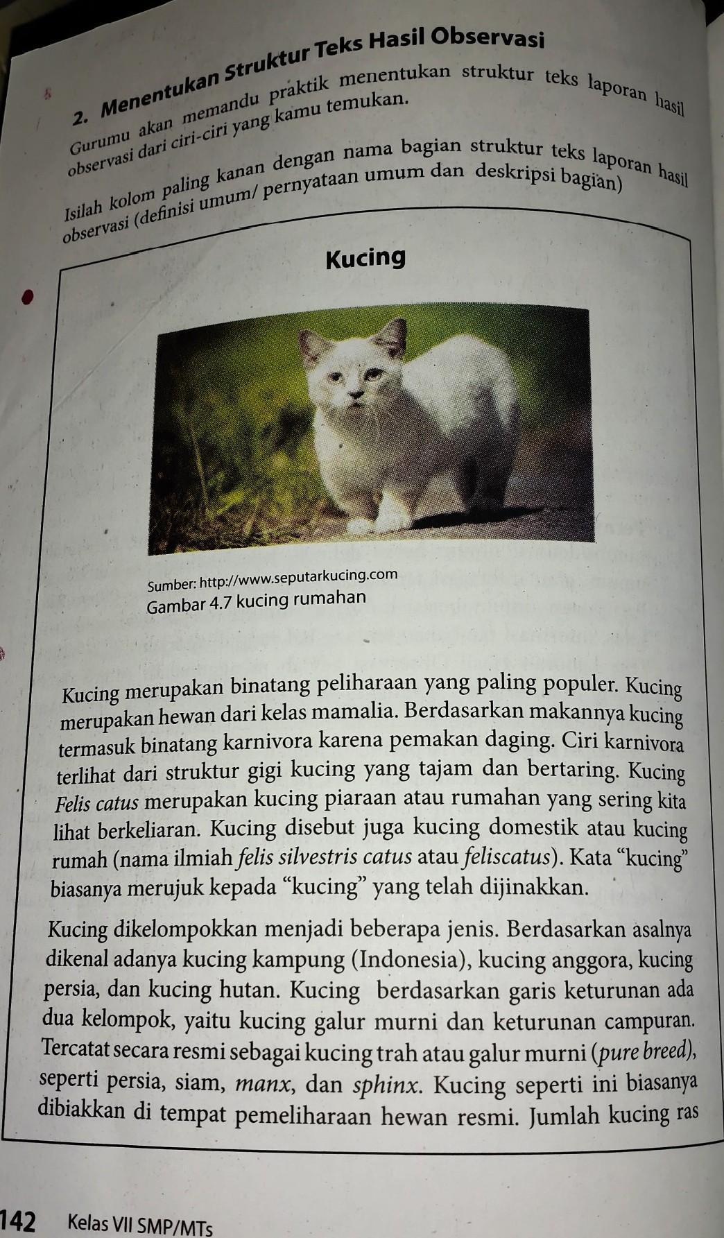 Pelajaran B Indonesiakelas 7 Smp Semester 1tugas Halaman 142 Tentukan Struktur Dari Teks Brainly Co Id